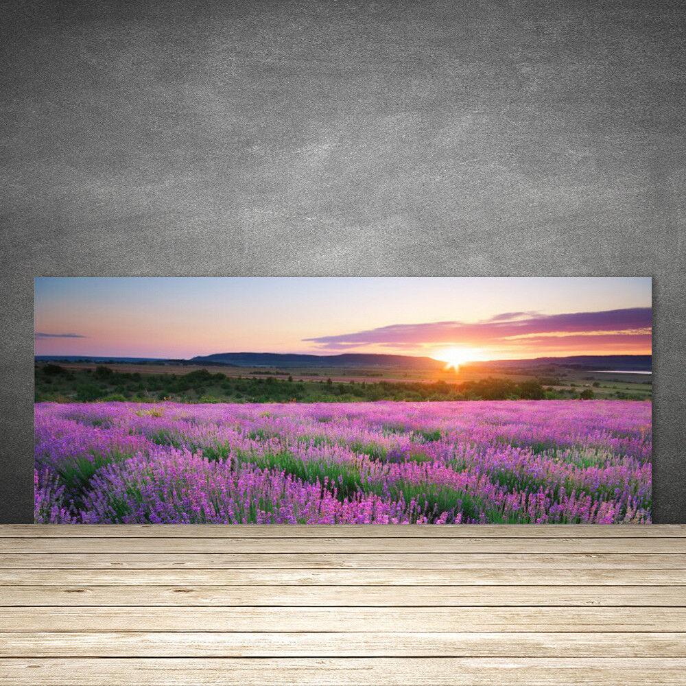 Crédence de cuisine en verre Panneau 125x50 Nature Prairie Fleurs Soleil