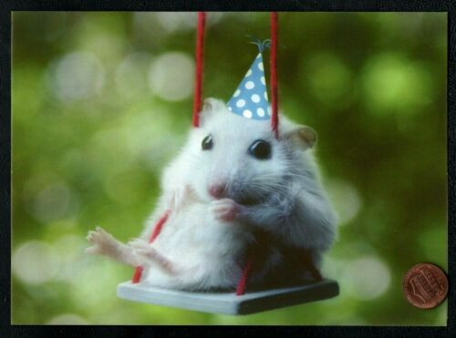 NEW Cute Tiny Mouse Mice Rodent Swing Party Hat Happy Birthday Greeting Card