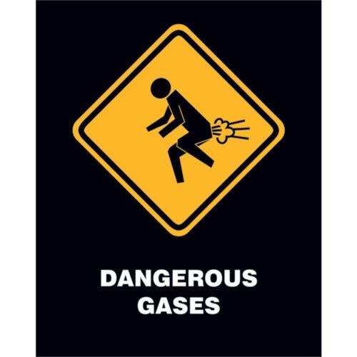 Dangerous Gases 40cm X 50cm Mini Poster