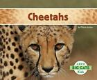 Cheetahs 9781629700014 by Claire Archer Hardback
