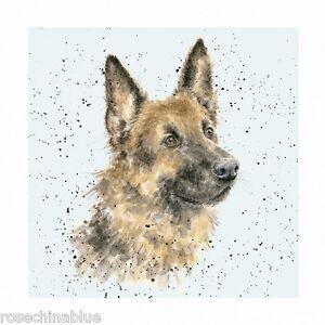 Wrendale designs a dogs life greeting card german shepherd alsatian image is loading wrendale designs a dog 039 s life greeting m4hsunfo
