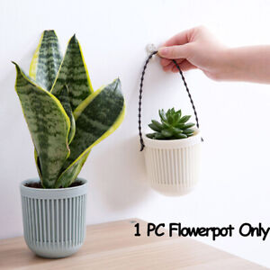 Cactus-Succulents-Plant-Flower-Plastic-Hanging-Pots-Flowerpot-Garden-Home-Decor