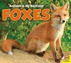 Foxes by Aaron Carr (Paperback / softback, 2015)