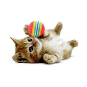 50 Stück Glitter Lametta Pompom Bälle für Spiel Ball Kätzchen Katze