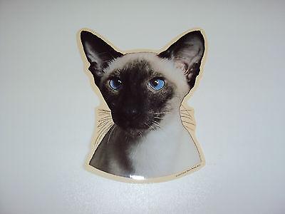 Adesivi Siam-gatto-auto Adesivi Diverse Varianti-mostra Il Titolo Originale Famoso Per Materiali Selezionati, Disegni Innovativi, Colori Deliziosi E Lavorazione Squisita
