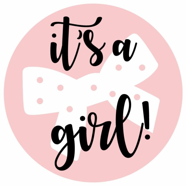 35 Baby Shower 'it's a Girl' Pink Party Accessories Stickers Gender Reveal Games