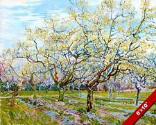 VAN GOGH SPRING BLOSSOMS ON FRUIT TREES FARM LANDSCAPE PAINTING ART CANVAS PRINT