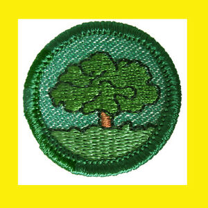 1950s STAR FINDER Intermediate Girl Scout NEW Badge Patch Merrow EdgMulti=1 Ship