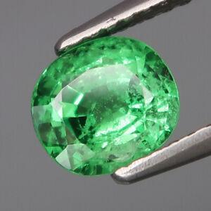 1-14Ct-Ravishing-Color-amp-Full-Fire-Natural-Top-Green-Tsavorite-Garnet-Tanzania