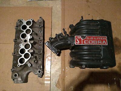 Mustang Terminator Intake Manifold