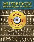 Muybridge's Human Figure in Motion by Eadweard Muybridge (Mixed media product, 2007)