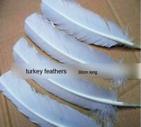 100pcs White Hard Rod Turkey Wing Feathers 25-30cm Fit Your Crafts Wholesale