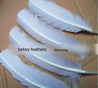 100pcs White Hard Rod Turkey Wing Feathers Lot 10-12inch/25-30cm Fit Your Crafts