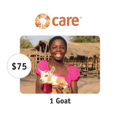 CARE $75 One Goat Symbolic Charitable Donation