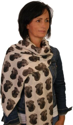 scarf with Black Labrador dog on womens fashion printed shawl wrap mike sibley