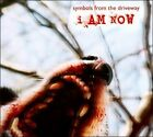 I Am Now [Digipak] by Symbols From the Driveway (CD, 2011, Transient 1)