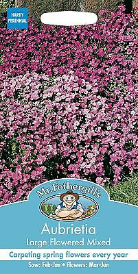 Mr Fothergills - Flower - Aubrietia Large Flowered Mixed - 400 Seeds