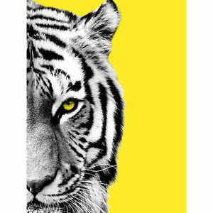 Close-up-Beasties-Tiger-Large-Wall-Art-Print-18X24-In
