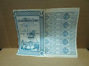 COMPAGNIE DE LAITERIES ET BOUCHERIES REUNIES AU MAROC action de 100f 1923