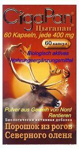 Cigapan-biologisch-aktives-Pulver-aus-Rentierengeweih-60-Kaps-jede-400-mg