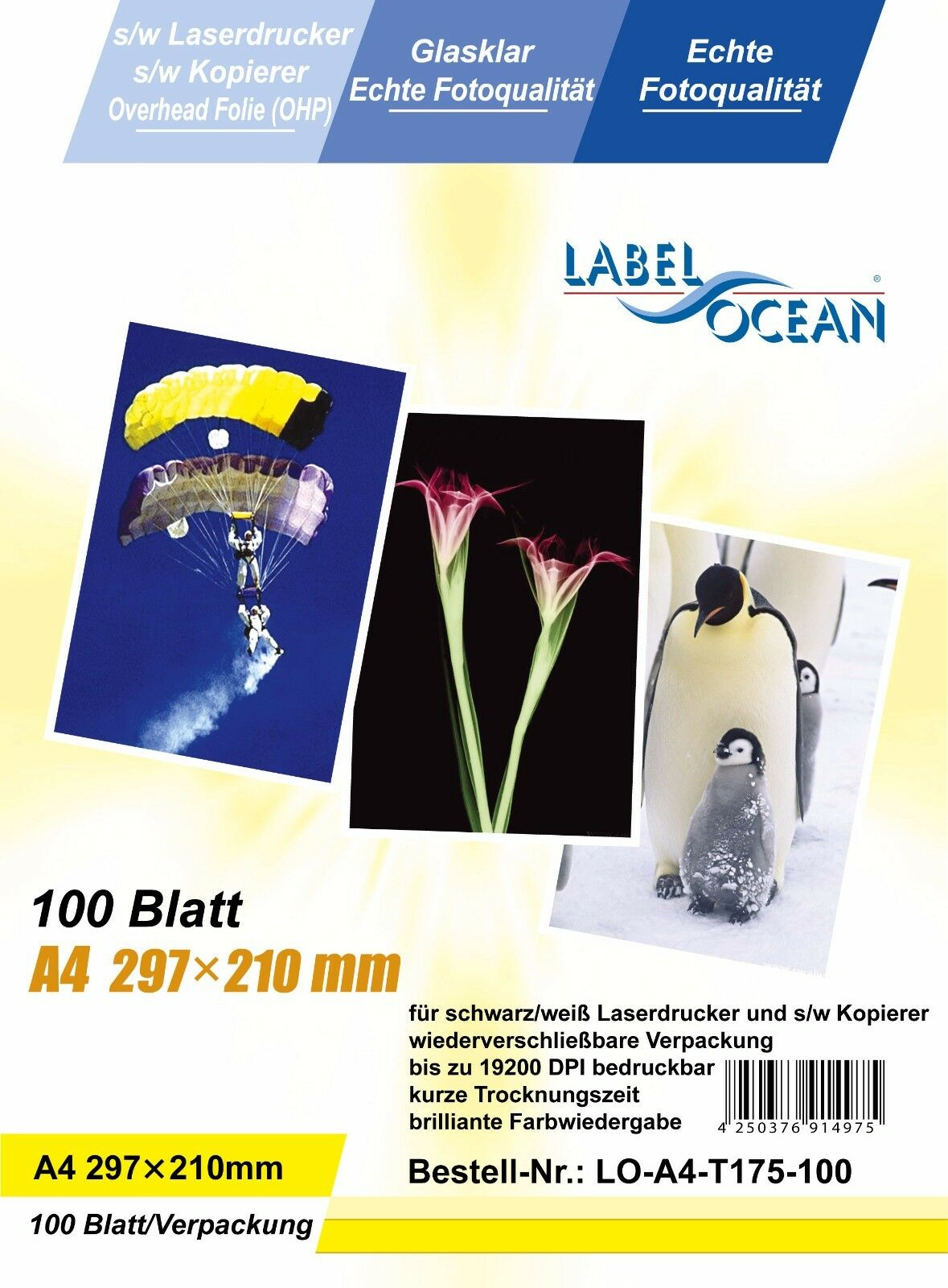 Transparent Film Page Markers 5 Colours 100 Sticky Arrow Highlighter Tabs