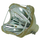 Original Philips Projector Replacement Lamp for Sanyo PLC-SL15