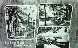 Alte Ansichtskarte/vintage postcard Königs Waldschänke Hohenwarthe h65 - Wien, Österreich - Alte Ansichtskarte/vintage postcard Königs Waldschänke Hohenwarthe h65 - Wien, Österreich