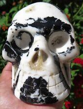 4LB 12.1OZ Fantastic Natural Zebra Jasper Crystal Carving Art Skull