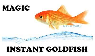 MAGIC INSTANT GOLDFISH