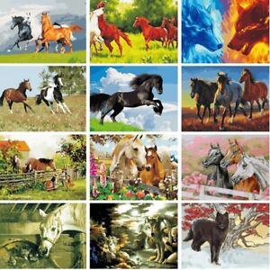 Horse-Cat-Animals-DIY-Acrylic-Paint-By-Number-Kit-Oil-Painting-Canvas-Wall-Decor