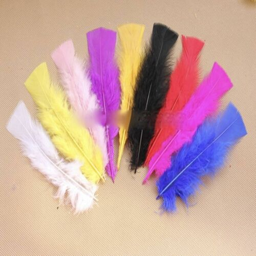 Beautiful  Natural Pheasant Rooster Feathers Chicken Fascinator Costume Crafts