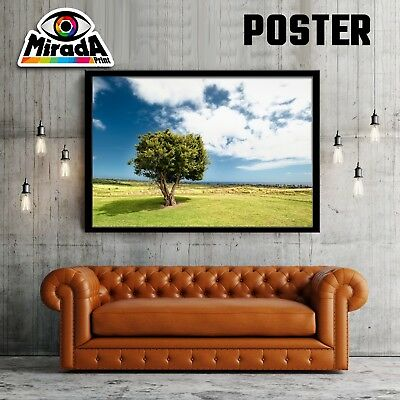 POSTER PAESAGGIO ALBERO TREE VERDE NATURA CARTA FOTOGRAFICA35x50 50x70 70x100