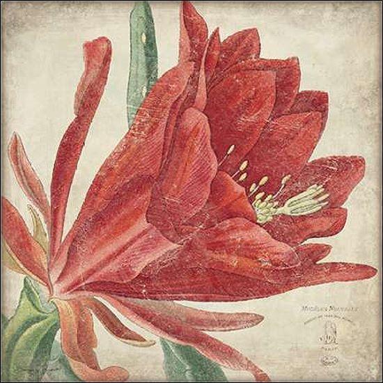 Stephanie Marrossot  Rosso Fiori Barella-Immagine Schermo Fiori Rosso