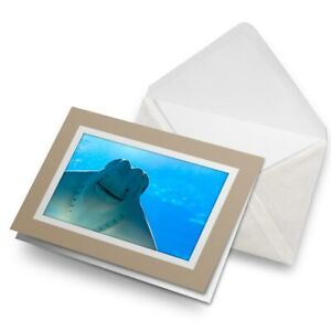 Greetings-Card-Biege-Eagle-Ray-Ocean-Sea-Fish-Fun-2772