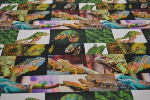 Chamäleon Stoff mit Leguan Geckostoff Stoff Chamäleon Dekostoff Reptilstoff D1