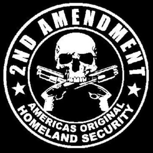 2nd Amendment America/'s Original Homeland Security POCKET TEE T SHIRT