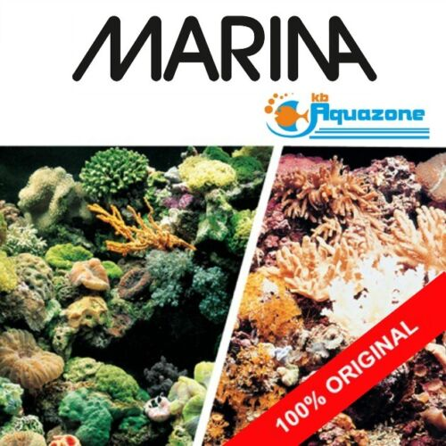 Double Sided Background 45 cm HIGH* 2 3 4 5 6 ft Marine Reef//Coral MARINA