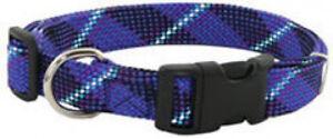 Auburn-Leathercrafters-Reflective-Nylon-Web-Dog-Collars-RED-GREEN-BLUE-ORANGE