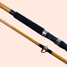 Surf Fishing Rods