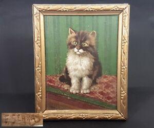 100% De Qualité Image Dans Le Cadre Chat Ölbild Huile Sur Contreplaqué Signé Um 1900 - 1920
