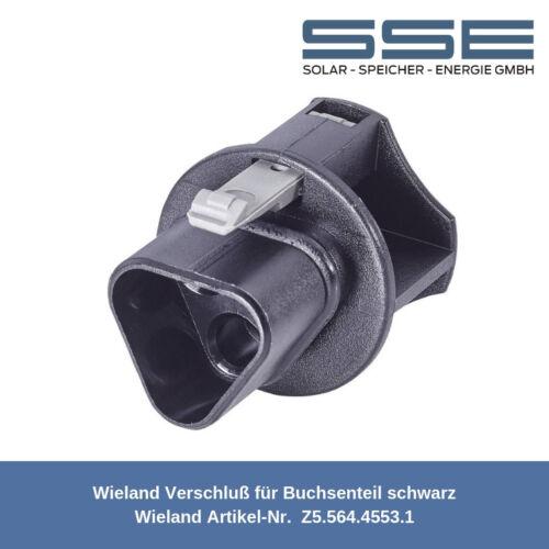 Wieland enchufe cilíndrico trozo de cierre z5.564.4553.1//adecuado RST 20 /& RST 25