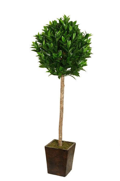 Best Artificial 1,5 M 150cm Nobile Alloro Albero Tropicale Pianta Ufficio