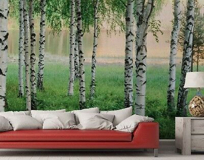 Fototapete Nordic forest Birkenwald im Nebel 368 x 254 cm