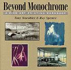Beyond Monochrome: A Fine Art Printing Workshop by Tony Worobiec, Ray Spence (Paperback, 1999)