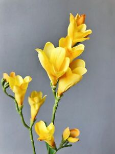 Artificial yellow freesia realistic faux silk spring flower ebay image is loading artificial yellow freesia realistic faux silk spring flower mightylinksfo