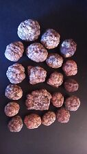 "Geodes, Nodules, Brain Stones from ARIZONA 20 pcs 3 lbs from 3/4"" to 2"" diameter"