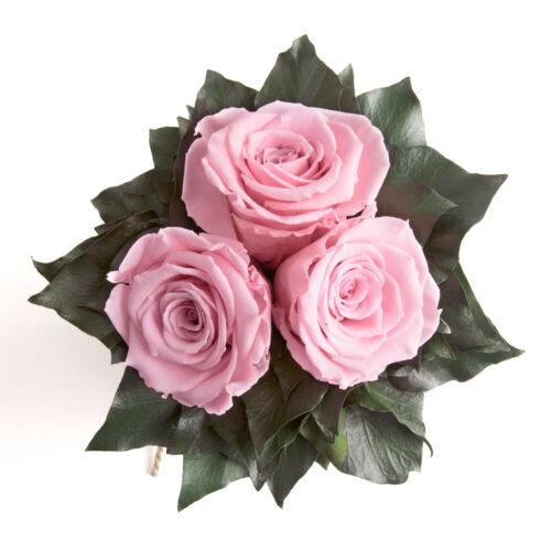 Blumengesteck mit Zimtbecher 3 konservierte Rosen haltbar 3 Jahre Rosengesteck