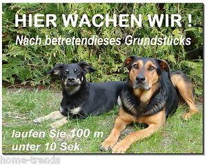 Haustierbedarf Intellektuell Mischling-hund-aluminium-schild-0,5-3 Mm Dick-türschild-warnschild-hundeschild
