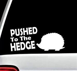 Pushed To The Hedge Hedgehog Decal Sticker For Car Window Bg170 Sonic Skateboard Ebay