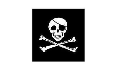 NEW 3 Pirate Skull Replacement Flag ATV Bicycle Rhino UTV